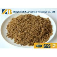 Quality GMP Pure Natural Fish Meal Powder / Animal Feed Additives 65% Protein Content for sale