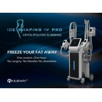 China top 10 supplier's CE approved 4 handles coolsculpting technology fat freeze body slimming machine for weight loss