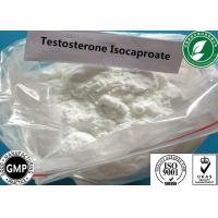 Quality Raw Steroid Powder Testosterone Isocaproate For Muscle Gain CAS 15262-86-9 for sale