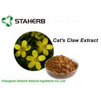 Yellow Brown Powder Herbal Extract Ratios , Cat's Claw Extract P.E 5/1 10/1 20/1 TLC / HPLC