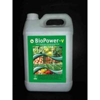 BioPower-V Seaweed Fertilizer, Plant Food, Foliar Fertilizer