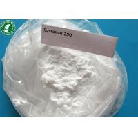 Quality Testosterone Sustanon 250 Injectable Anabolic Steroids Powder For Bodybuilding for sale