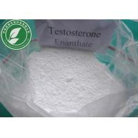 Quality Raw Steroid Powder Testosterone Enanthate CAS 315-37-7 With Safe Delivery for sale