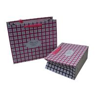 Wholesale Pink Square Ribbon Handle Paper Carrier Bag for Gift Packing Matt Coated from china suppliers