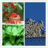 Wholesale Diammonium phosphate dap granular fertilizers agriculture from china suppliers