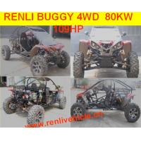 Quality electric buggy/go kart for kids, RL 1100CC for sale - michaelzs