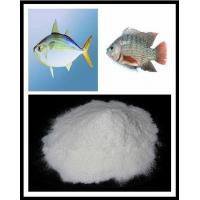 Wholesale Fish Collagen Protein from china suppliers