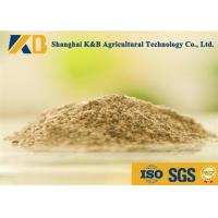 Buy Livestock Fish Bone Meal / Fish Powder Fertilizer Maintain Normal Metabolism at wholesale prices