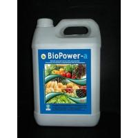 BioPower-A Seaweed Fertilizer, Amino Acids Fertilizer