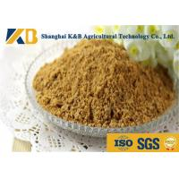 Quality Purity Easy Absorb Fish Powder Fertilizer / Fish Meal Feed For Shrimp for sale