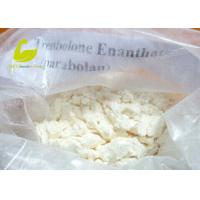 Quality Testosterone Enanthate supplier White Crystalline Muscle Building Steroid Hormones Powder Testosterone Enanthate for sale
