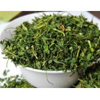 Abrus Precatorius Lleaves Stem Teaherbal Teatraditional Herb