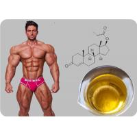 Quality Testosterone Propionate Oil - based Injectable Testosterone Steroid Powder for sale