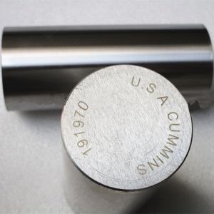 Cylinder Kit Piston Pin 191970 For Cummins Diesel Engine Spare Parts