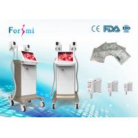 2016 newest designed champagane Fat Freeze Body Slimming Machines to weight loss