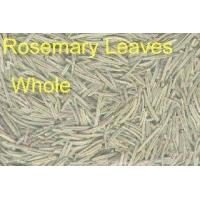 Quality ROSEMARY LEAVES for sale