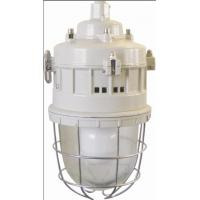 Quality Series of anti-explosion lamps Flame-proof lamp Series BGD52(Maintenance-free energy-saving EDL electrodeless lamp)ⅡC、DIPA20 for sale