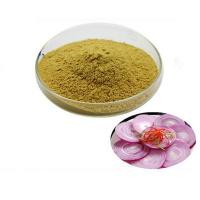 Quality SR High Quality Leek Seed Extract,Tuber Onion Seed Extract,Chinese Chive Seed Extract for sale