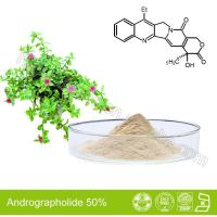 Wholesale Andrographolide-Andrographis Paniculata Extract from china suppliers