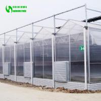 Galvanized Steel Structure polycarbonate greenhouse