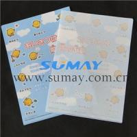 Clear Envelopes/Plastic File Folders