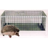 Wholesale Hedgehog Cage from china suppliers