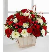 Quality Red Carnation NO.51 delivery flower to taiwan for sale