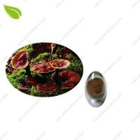 Quality Ganoderma Extract >herbal extract for sale