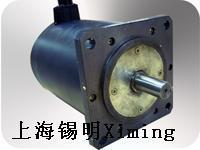 Quality Servo Motor Two-phase stepper motor for sale