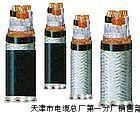 ZR-JHFFRP ZR-KHFF46 inflaming retarding armored cable