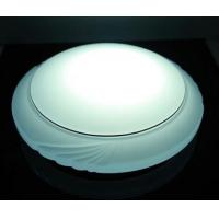 Quality Remote Control Meizu LED Ceiling Light-LED Spot Light,Spotlight,LED Neon Flex for sale
