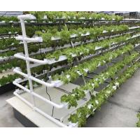 Quality Hydroponic Kits for sale